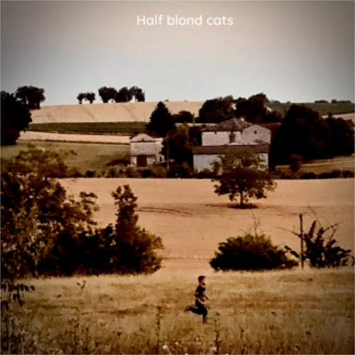 HALF BLOND CATS radio Localitiz